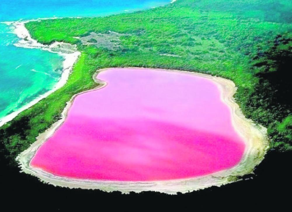 تعرف على السبب وراء لون بحيرة هيلير الوردي الساحر في أستراليا