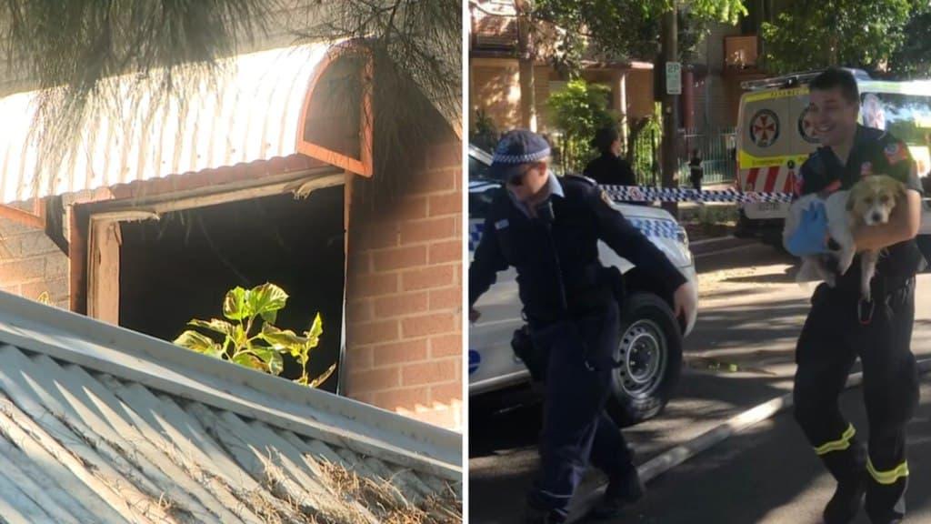 دخول امرأة وابنها الصغير في غيبوبة بسبب حريق كبير التهم منزل العائلة في سيدني