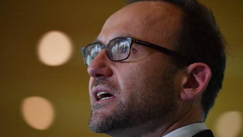 حزب الخضر الأسترالي يطالب بفرض ضريبة ثروة على أصحاب المليارات لتوفير رعاية مجانية للأسنان
