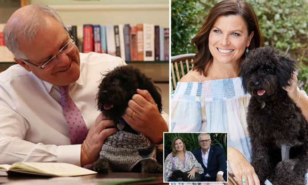جيران رئيس الوزراء الأسترالي يقدمون شكوى ضده بسبب صوت نباح كلبه