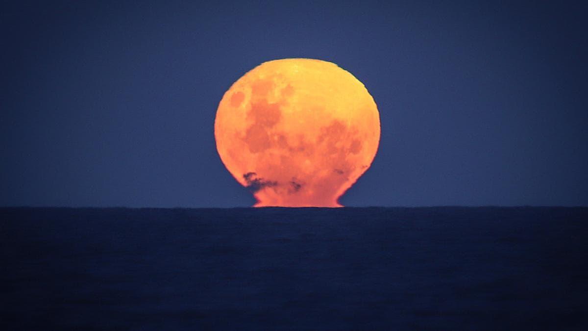 قمر الفراولة في أستراليا...إليك موعد ظهور القمر العملاق الأخير لعام 2021